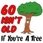 60 Isnt Old Tree