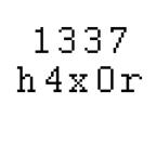 1337 h4x0r - Leet Hacker