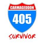Carmageddon Survivor