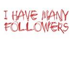 I have many followers