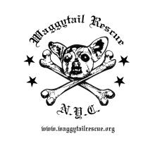 Punky Waggytail Rescue Logo