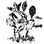 Art Plants (Ink Monoprint)