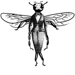 Fly Dressed in Vintage Victorian Clothing