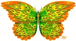 Orange and Green Flame Butterfly