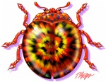 Tie Dye Bugs