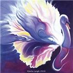 Violet Swan