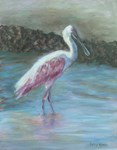 HAPPY SPOONBILL