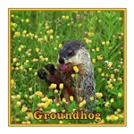 GROUNDHOG WITH FLOWER