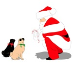 Pugs with Santa