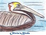 Save the Gulf: Olivia's Birds