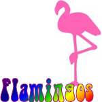 Flamingo T Shirts & More