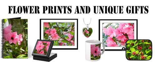 Mother's Day Flower Picture Art Gifts, Pink Azalea