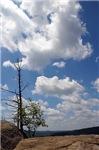 Blue Sky Park