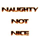 Naughty Not Nice