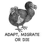 Adapt, Migrate or Die
