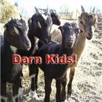 Darn Kids