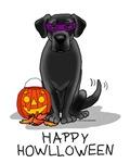 Halloween Black Lab