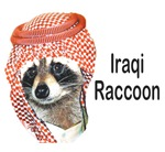 Iraqi Raccoon | Strange & Weird Animal T-shirts - Support the Troops!