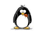 Poppy Penguin