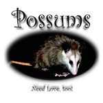 Possums Need Love Too