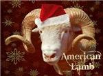 American Lamb-Holiday
