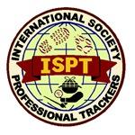 ISPT Patch Design