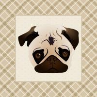Pug Face - Soft Tan Plaid