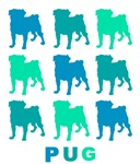 Blue and Green Pugs on White