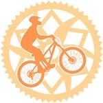 Biker Chainring Orange