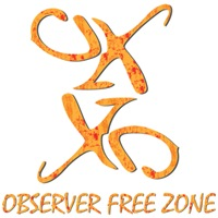 Observer Free Zone