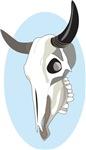 Pop Art - 'Steer Skull'