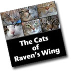 Cats of Raven's Wing