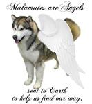 Malamute Angels