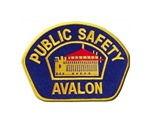 Avalon Public Safety