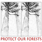 Protect Forests