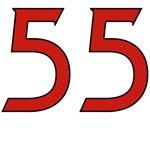 Vandal 55