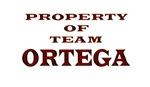 Property of team ORTEGA