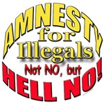 Amnesty HELL NO!
