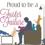 Foster Failure - Design #1 - by Andrea Heywood-Lob
