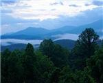 Smoky Mountain Scenics