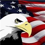 American Flag/Bald Eagle
