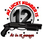 12 Gauage