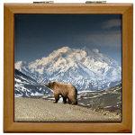 Bear Tile Boxes