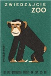 Chimpanzee Matchbox Label