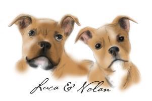 Nolan & Luca