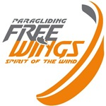 Free Wings
