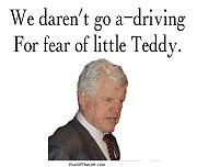 Fear of little Teddy
