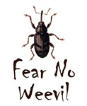 Fear No Weevil
