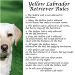 Yellow Lab Rules