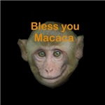Bless You Macaca